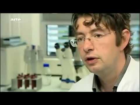 Schweinegrippe 2009 - Wolfgang Wodarg und  Christian Drosten - wer hatte Recht?