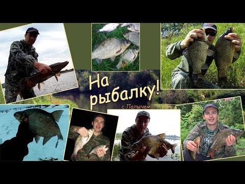 Рыбалка- вечный эксперимент. На рыбалку с Палычем!