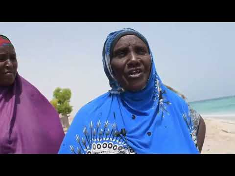 the urgent situation in the city of #Alula near Cape Guardafui  in #Puntland  #Somalia