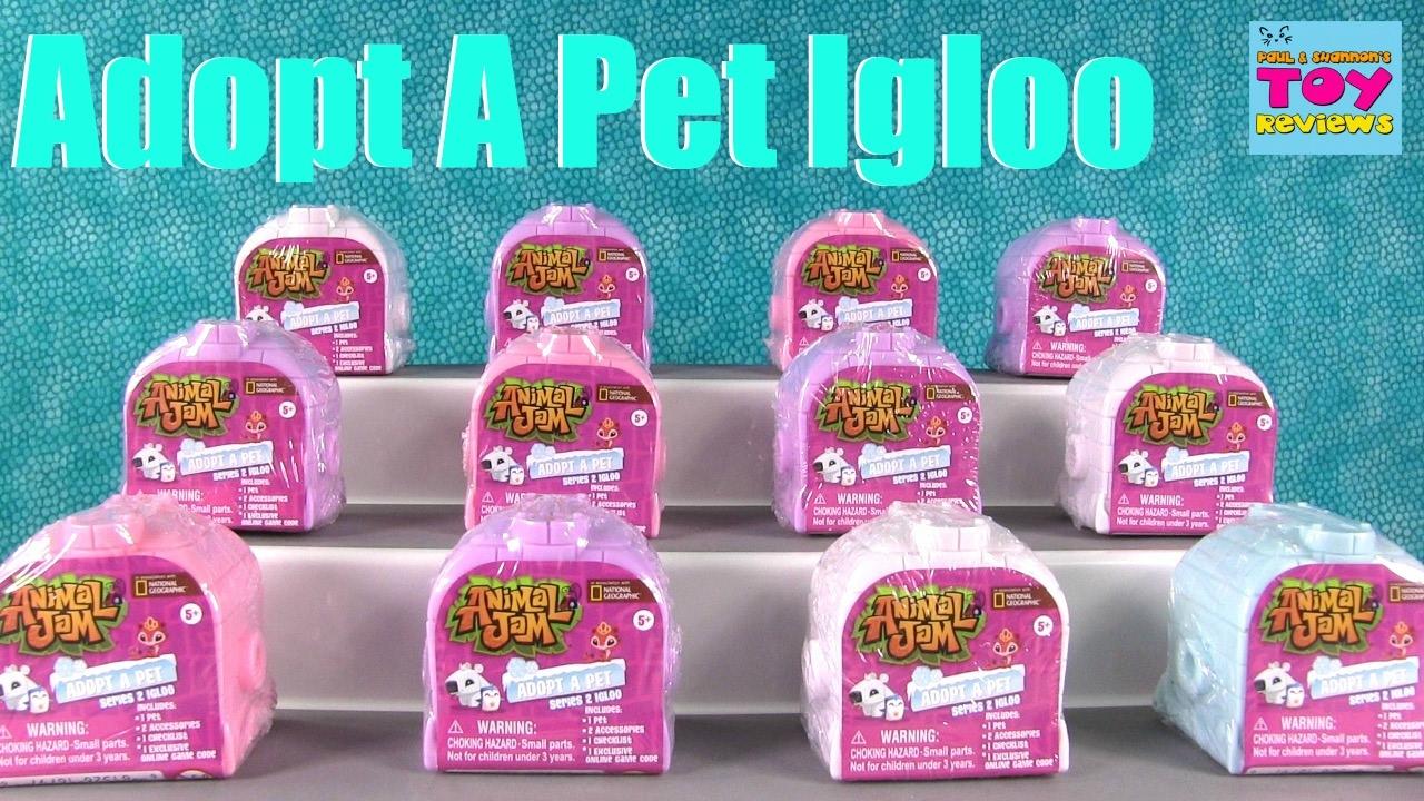 Animal Jam Igloo Adopt A Pet Series 2 Blind Bag Opening