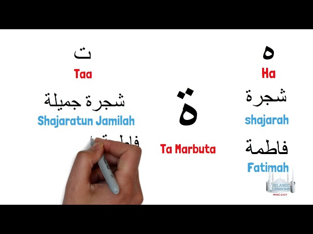 Reading Arabic - Supplementary Letters - Lesson 2