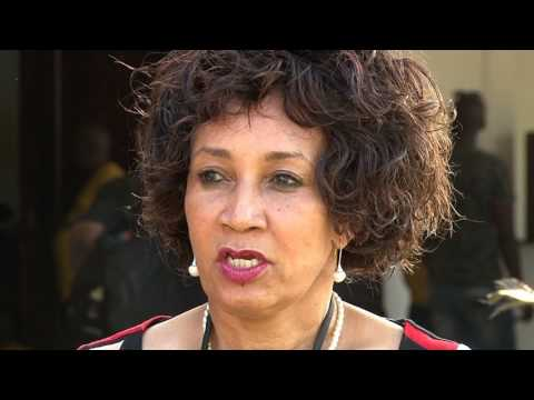 Cde Lindiwe Sisulu interview