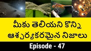 Top 10 Unknown Facts in Telugu Episode -47 | Interesting and Amazing Facts | Telugu badi