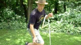 Bullwhip Cracking: four in one