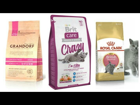 Сухой корм для котят. Royal Canin,  Brit care,  GRANDORF. (Премиум,  Суперпремиум и Холистик)