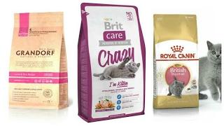 видео Корм для кошек Brit (Брит): обзор, отзывы и цены