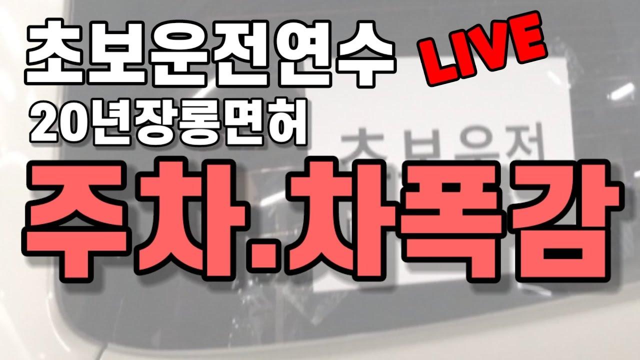 [라이브]주차요령.차폭감 배우기/초보운전연수 20년 장롱면허
