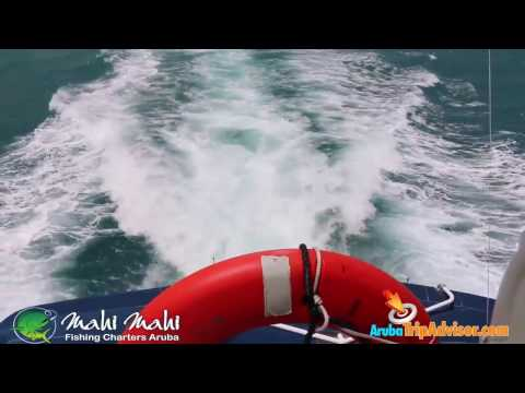 Mahi Mahi Deepsea fishing charters Aruba - ArubaTripAdvisor