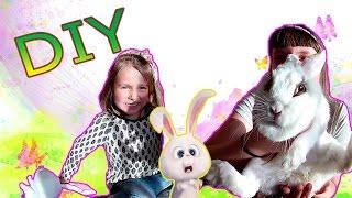 DIY:    Кролик из мультфильма-Тайная жизнь домашних животных!