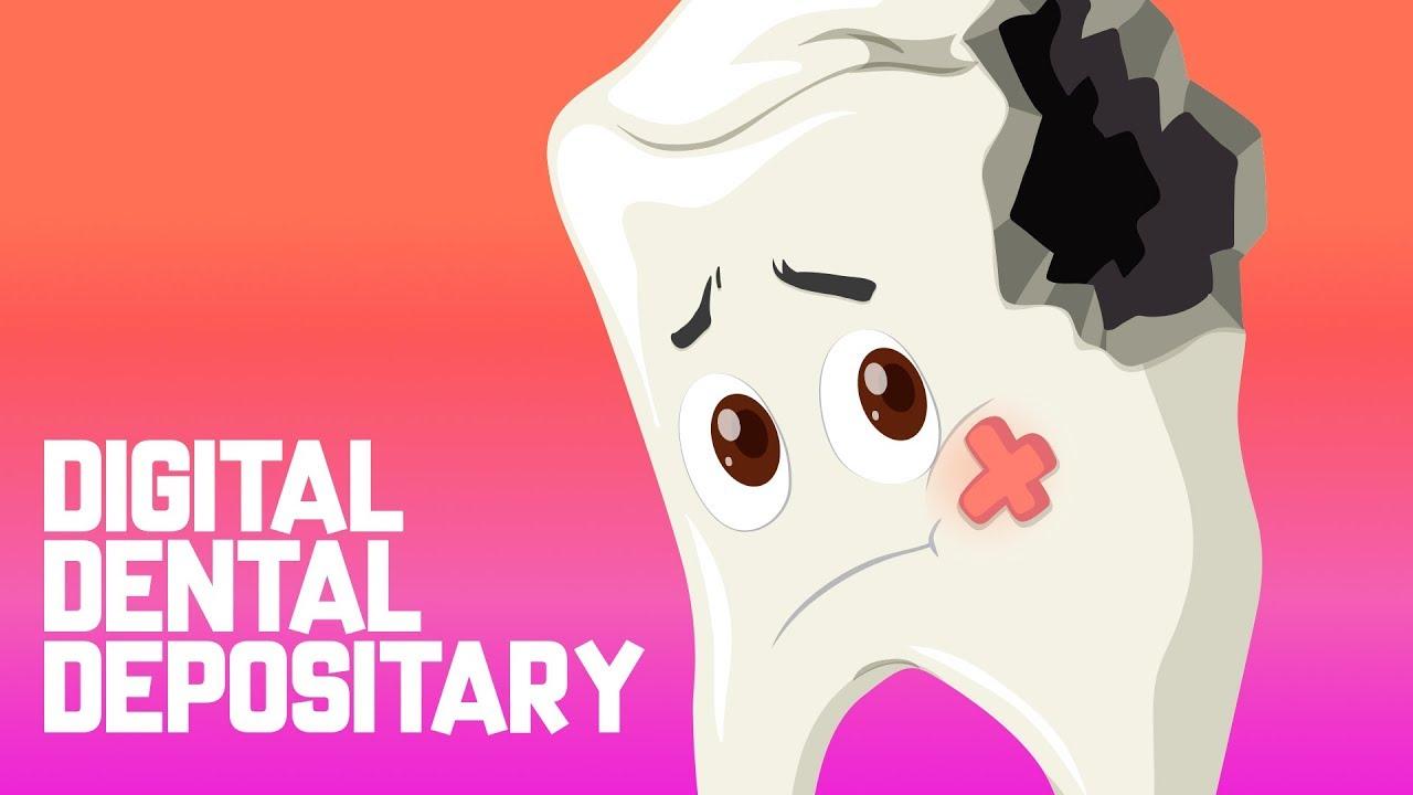 medium resolution of Teeth and dental care   TheSchoolRun