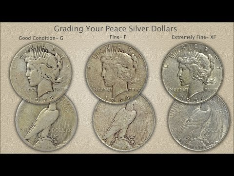 Grading Peace Silver Dollars