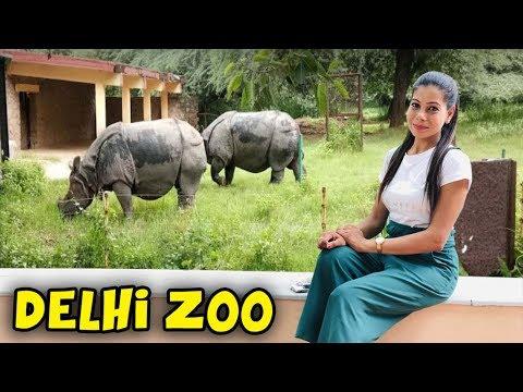 DELHI ZOO | चिड़ियाघर | Sanjhalika Vlog