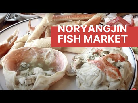Kawaii Eats: Traditional Korean Noryangjin (노량진수산물시장) Fish Market in Seoul | Korea Vlog