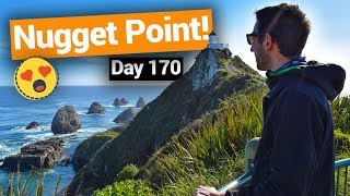 Video blog - Nugget Point & Balclutha - Day 170
