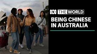 Landmark survey reveals what it's like to be Chinese in Australia |The World