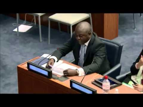 Mr. Joseph Enyegue Oye - Sightsavers Cameroon - May UN Post-2015 negotiations