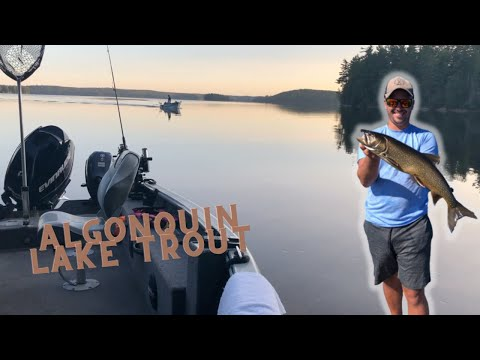 Lake Trout Fishing In Algonquin Park!