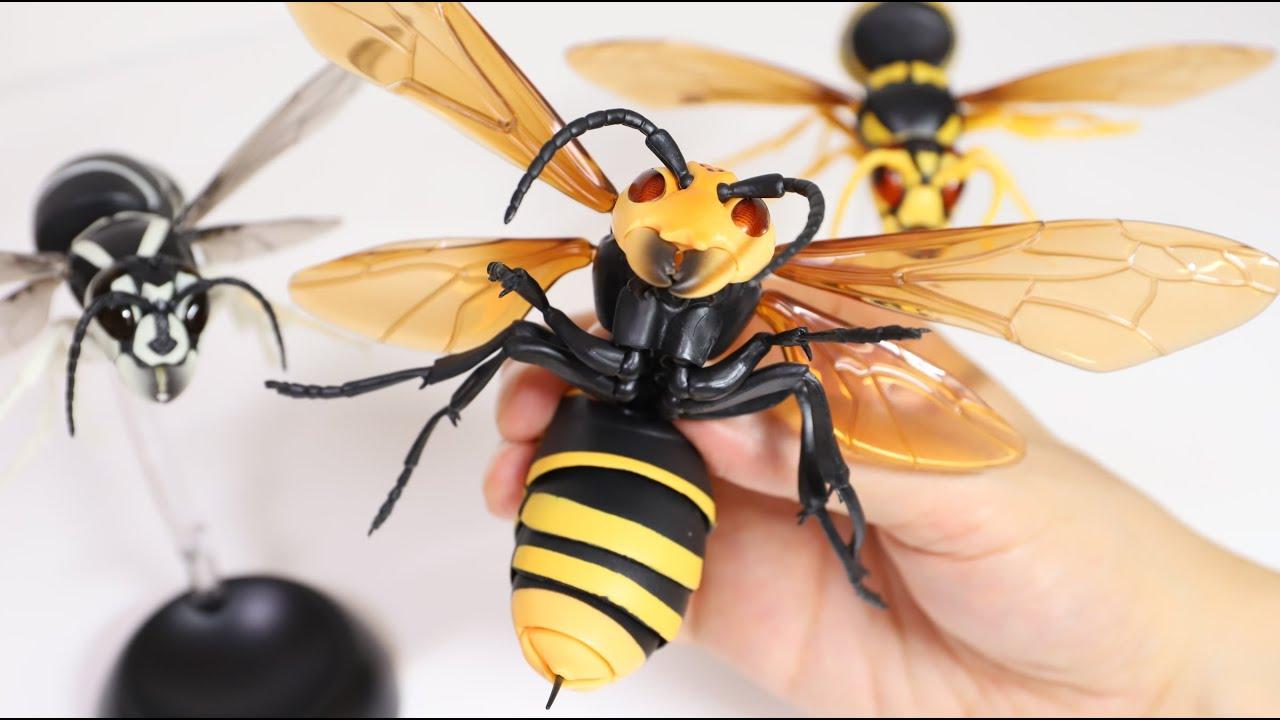 Japanese yellow hornet Hornet Capsule toy 2.