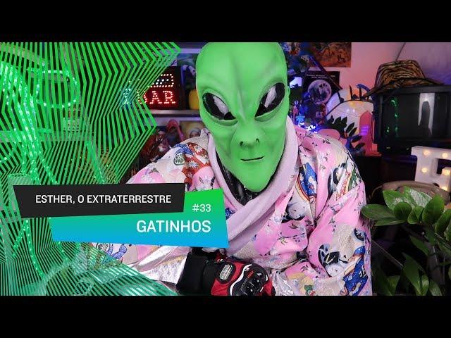 Esther, o Extraterrestre - Gatinhos