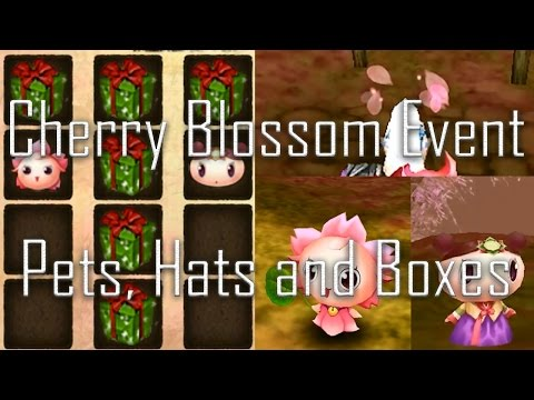 Order and Chaos Online Cherry Blossom Event - Pets, Hats and Opening Boxes