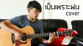 เป็นเพราะฝน Polycat - Fingerstyle Guitar Cover by tonpalm