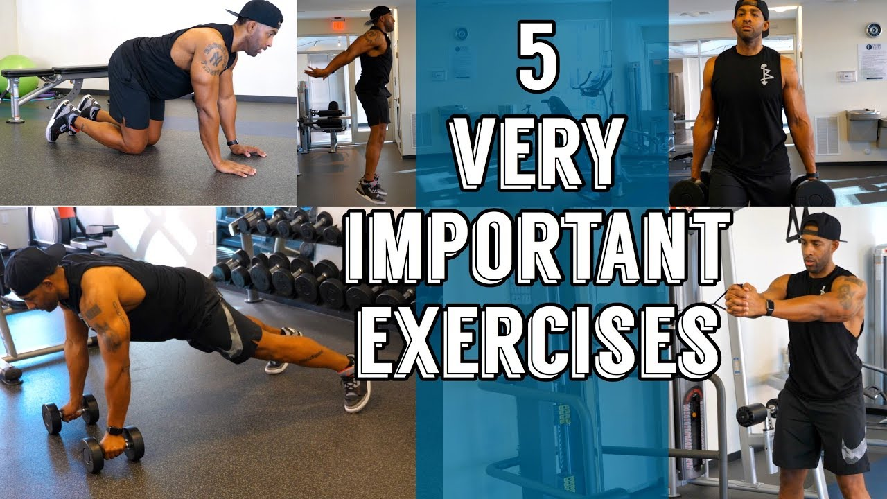 5 Exercises You Should Be Doing *Very Important*