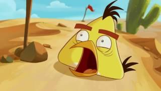 Злые птички - Энгри Бердс - Беги, Чак, беги (S1E20) || Angry Birds Toons