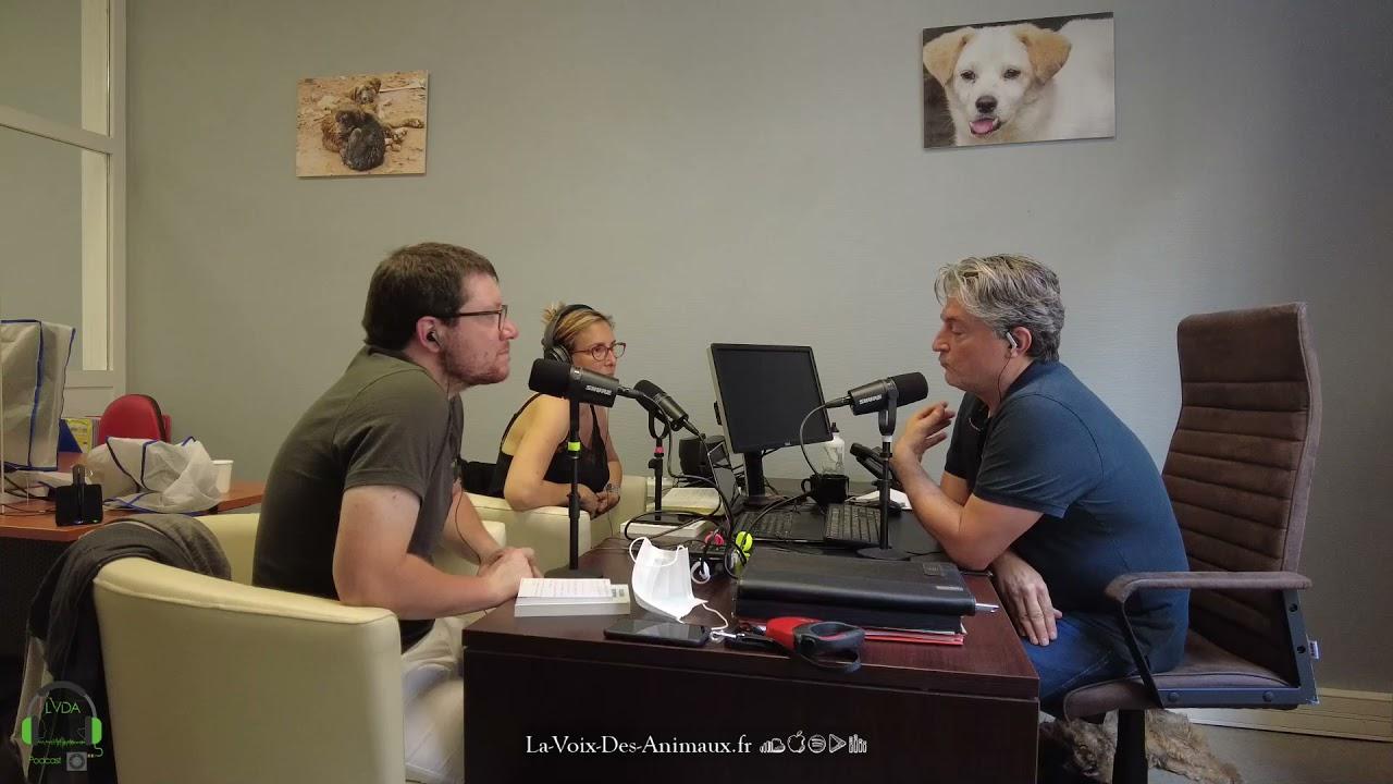 LVDA#31 Le Dur Combat De La Fondation Brigitte Bardot (avec Christophe Marie, FBB)