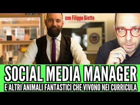 Social Media Manager ed altri animali fantastici che vivono nei Curricula