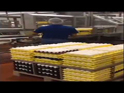 Nearly 207M Eggs Recalled Due to Possible Salmonella Contamination
