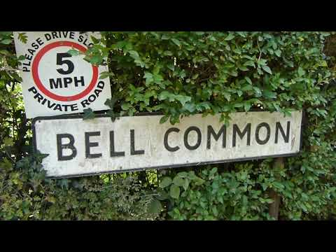 Essex Walk: Theydon