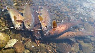 Весенняя рыбалка!Часть1.Простое рыбацкое счастье!Как все начиналось.Нашли вещи рыбака.Лёд тронулся!