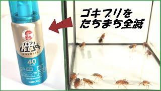 エンダー ゴキブリ 効果 ム ゴキブリムエンダー