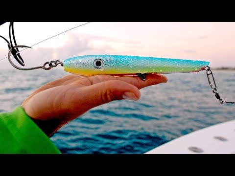 Fishing for Sharks with Topwater Lures, Live Bait and Float Rigs - 4K