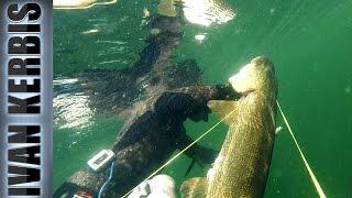 Крокодилы Тувы 2015. Трейлер.(Трейлер к фильму о подводной охоте в Туве на щуку и окуня в 2015 г. В фильме представлены кадры подводных охотн..., 2016-03-11T08:19:15.000Z)