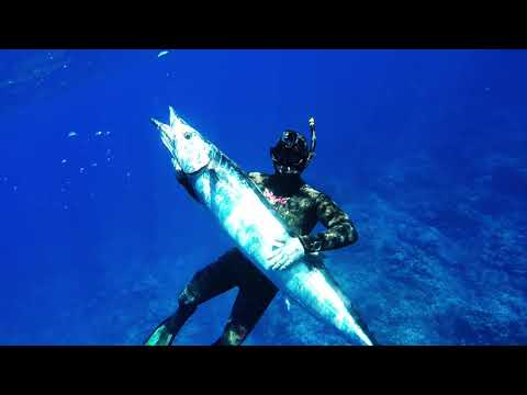 Come with me - Spearfishing-NEW CALEDONIA- 2017