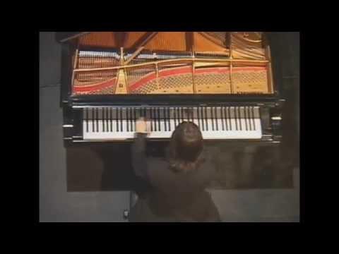 Horacio Lavandera - Mozart Fantasia K.475 - Sonata K.457 - Palacio Sans Souci
