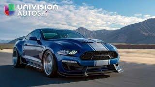 El Shelby Mustang Super Snake 2018-2019 en acción   Univision Autos