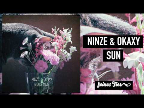 Ninze & Okaxy - Sun mp3 indir