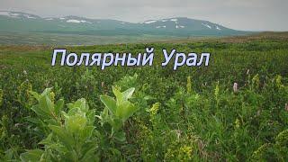 Полярный Урал. Polar Urals