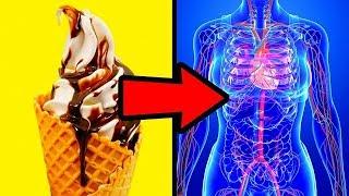 Corpo causar dores açúcar no pode comer