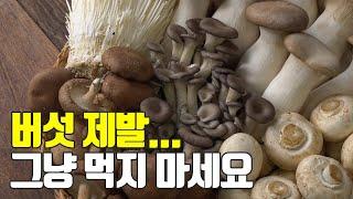 버섯의 모든것! 이것만 숙지하세요 보관,효능,종류,먹는…