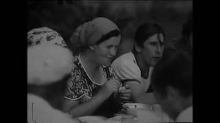 """Документальный фильм """"В КРАЮ ТИХОГО ДОНА"""". 1983 год"""