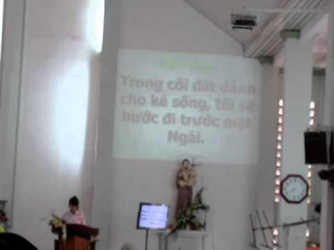 Thanh vinh 114   Trong coi dat danh cho ke song