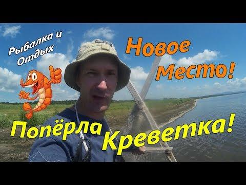 Ловля Креветки на море! Как Ловить Креветку чилимкой!? Приморский Край.