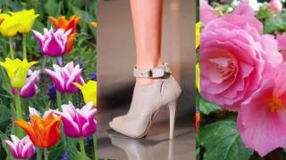 Moda Scarpe 2017: 2018 Le tendenze per le donne   Primavera Estate 👠...