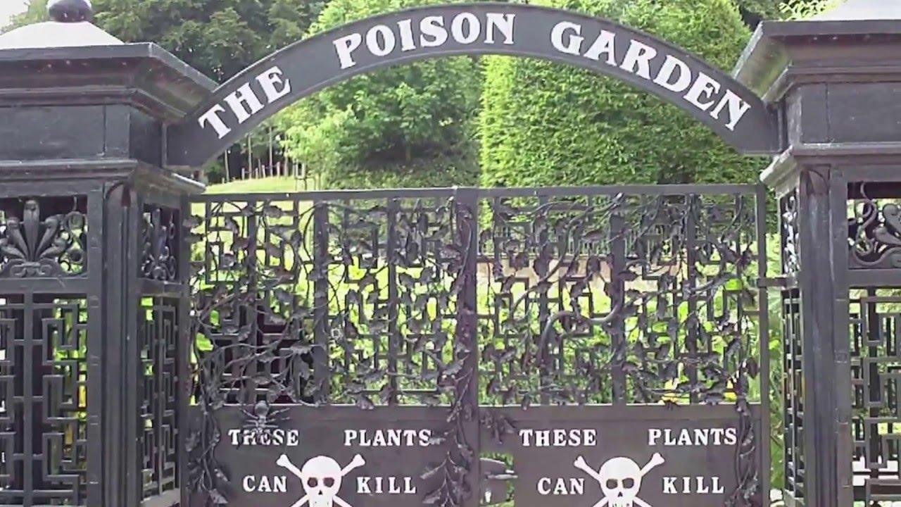 Alnwick Poison Garden Youtube