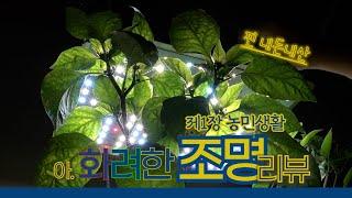 [내돈내산] 스마트팜 LED 조명 리뷰