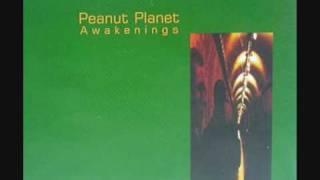 Peanut Planet - Awakenings