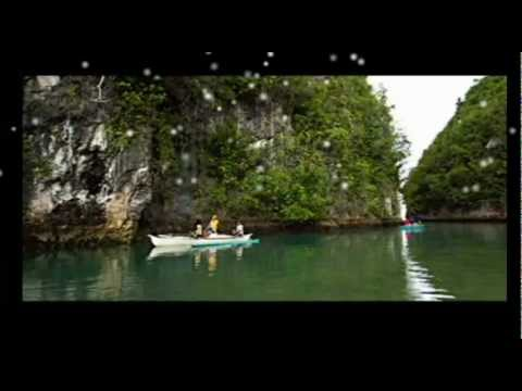 EcoTour Video Gallery